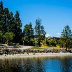 Lake Brunner Shoreline